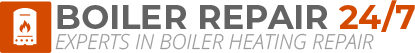 Shanklin Boiler Repair Logo
